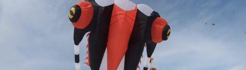 overstappen van tube kite naar foill kite